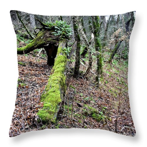 Log Throw Pillow featuring the photograph Mossey Log by Michael Waters