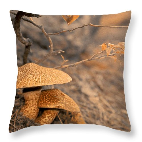 Mushrooms Throw Pillow featuring the photograph Mother's Care And Love by Aimelle