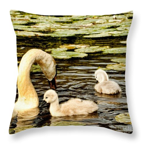 Lily Throw Pillow featuring the photograph Mothers Love by Isabella F Abbie Shores FRSA