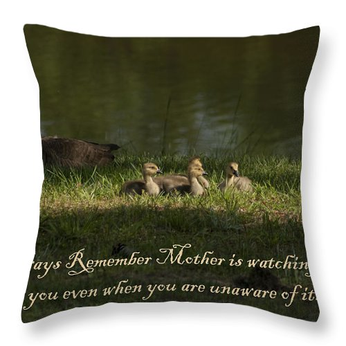 Mother Throw Pillow featuring the photograph Mother's Watchful Eye by Kathy Clark