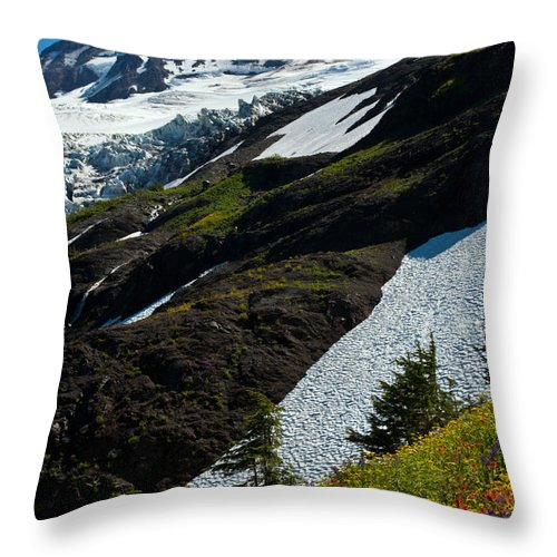 Mt Baker Throw Pillow featuring the photograph Mount Baker Floral Bouquet by Mike Reid