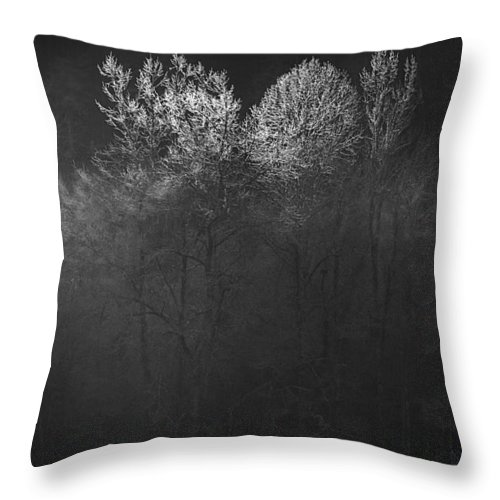 Landscape Throw Pillow featuring the photograph Mountain Morning by Gray Artus