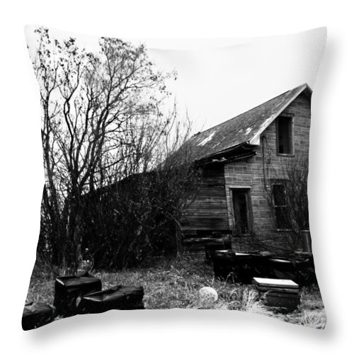 Sky Throw Pillow featuring the photograph Mr. Be by The Artist Project