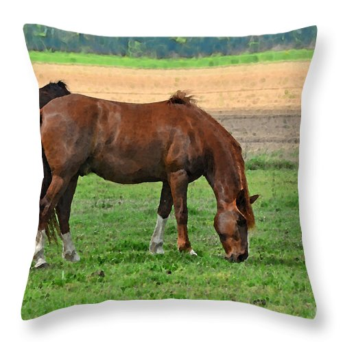 Nature Throw Pillow featuring the digital art Mucnching Sweet Spring Grass I Photoart by Debbie Portwood