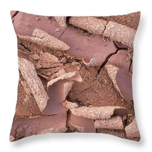 Bronstein Throw Pillow featuring the photograph Mud Curls by Sandra Bronstein