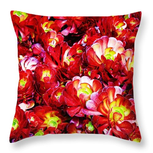 Flowers Throw Pillow featuring the photograph Multiplication by Caroline Lomeli