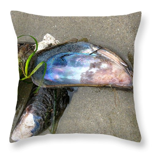 Mussel Throw Pillow featuring the photograph Mussel Shells by Linda Hutchins