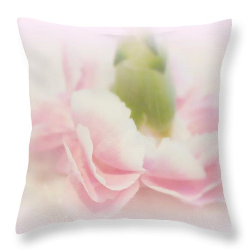 Kathy Bucari Throw Pillow featuring the photograph My Romance by Kathy Bucari