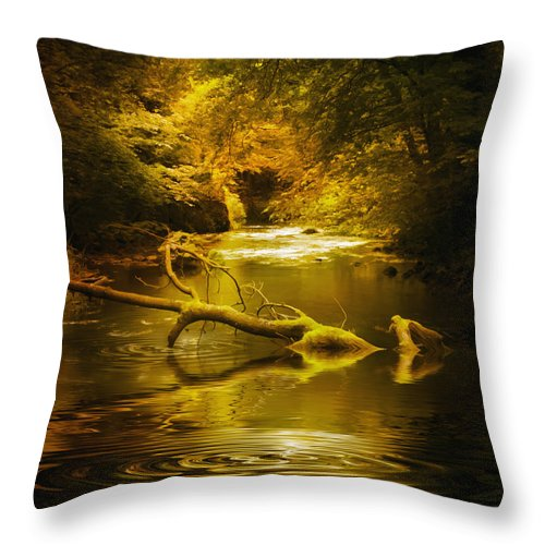 Background Throw Pillow featuring the photograph Mystery In Forest by Svetlana Sewell