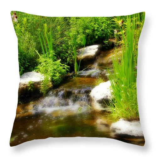 Landscape Throw Pillow featuring the photograph Natural Spring by Peggy Franz