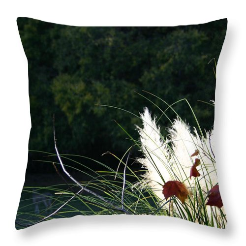 Grasses Throw Pillow featuring the photograph Natural Still Life by Nina Fosdick