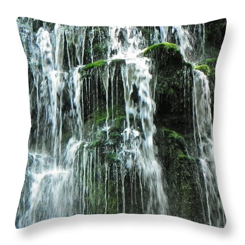 Family Four Photo Throw Pillow featuring the photograph Nature At It's Best by Brenda Donko
