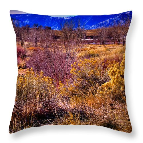 Denver Throw Pillow featuring the photograph Nature At It's Best In South Platte Park by David Patterson