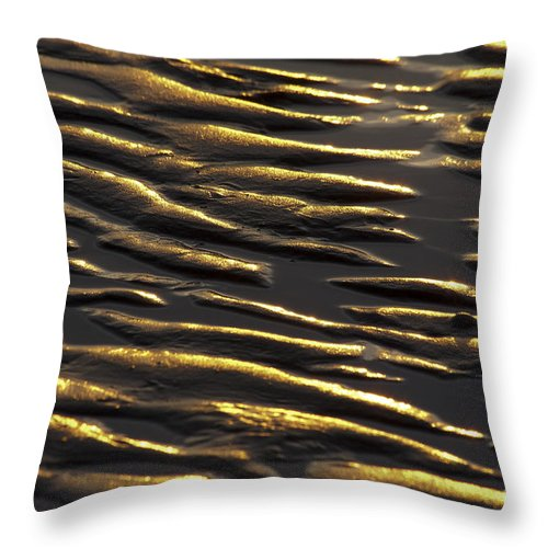 Beach Throw Pillow featuring the photograph Nature Patterns Series - 67 by Heiko Koehrer-Wagner
