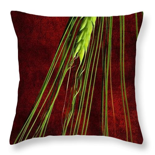 Abstract Throw Pillow featuring the photograph Nature Patterns by Svetlana Sewell