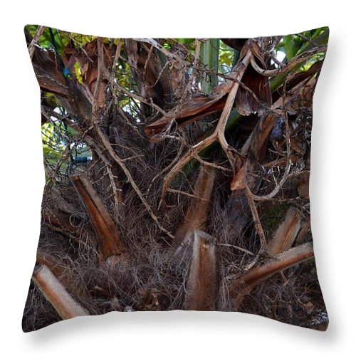 Angle Throw Pillow featuring the photograph Nature's Abstract by Maria Urso