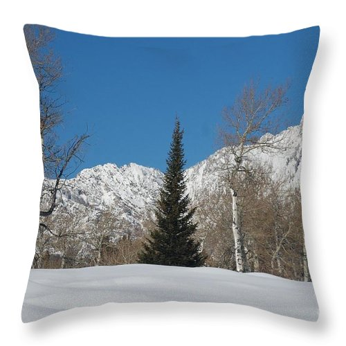 Christmas Throw Pillow featuring the photograph Nature's Christmas Tree by Lucy Bounds