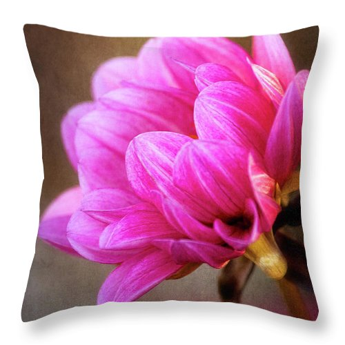 Flower Throw Pillow featuring the photograph Nature's Effulgence by Dale Kincaid