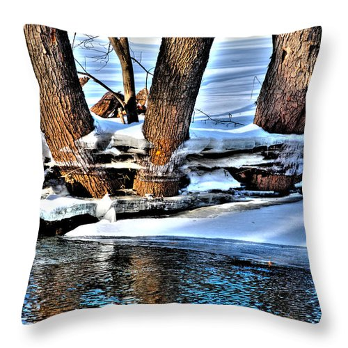 Waterloo Throw Pillow featuring the photograph Nature's Icy Abstract No.2 by Janice Adomeit