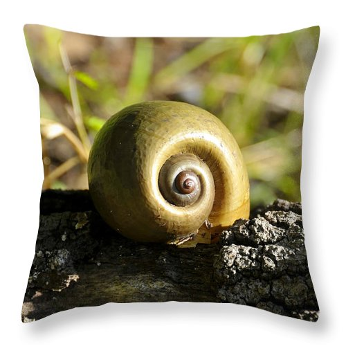 Snail Throw Pillow featuring the photograph Natures Perfection by David Lee Thompson