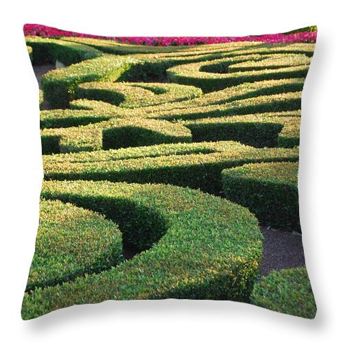 Nature Throw Pillow featuring the photograph Natures Puzzle by Michael L Gentile
