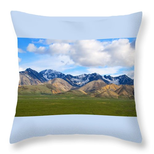 Alaska Throw Pillow featuring the photograph Nature's Spectacle by Michael Anthony