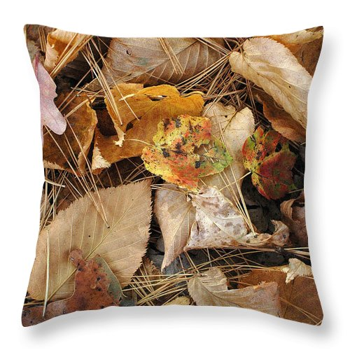 Nature Throw Pillow featuring the photograph Nature's Still Life 1 by Mike Nellums