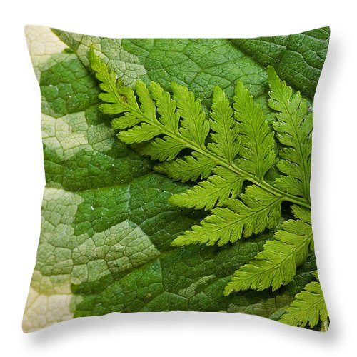Green Throw Pillow featuring the photograph Nature's Still Life 3 by Mike Nellums