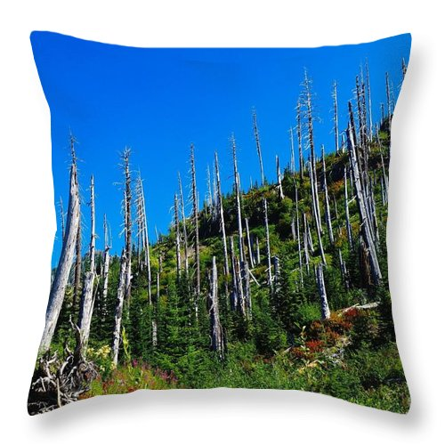 Trees Throw Pillow featuring the photograph Near The End Of The Blow Out by Jeff Swan