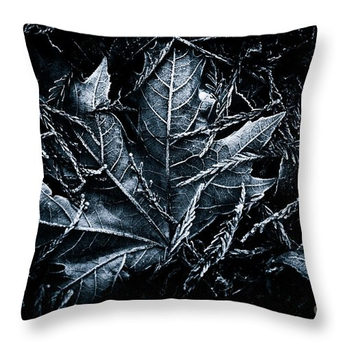 Beauty In Nature Throw Pillow featuring the photograph Nestled In The Pine by Venetta Archer