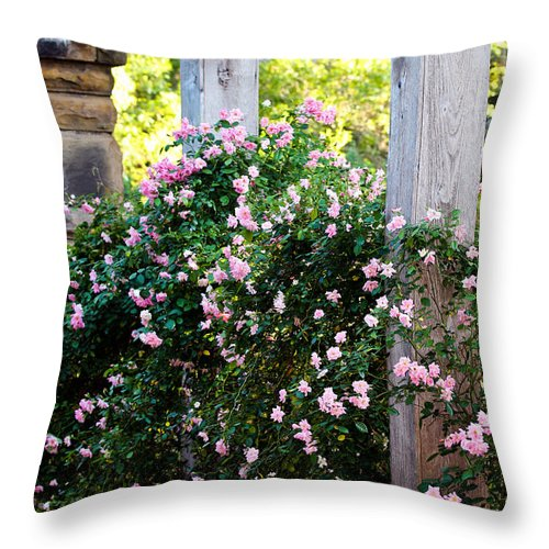 Roses Throw Pillow featuring the photograph Never Promised You A Rose Garden... by Elizabeth Hart