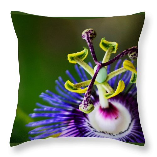 Passion Flower Throw Pillow featuring the photograph Never Too Late by Melanie Moraga