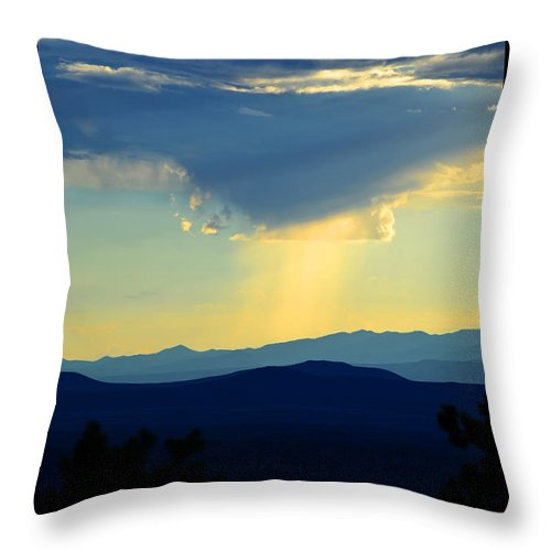 Landscape Throw Pillow featuring the photograph New Mexican Light by Susanne Still