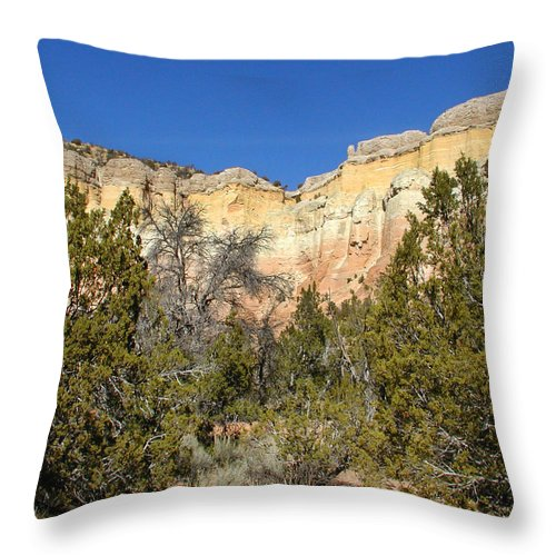New Mexico Throw Pillow featuring the photograph New Mexico Series - Bandelier I by Kathleen Grace