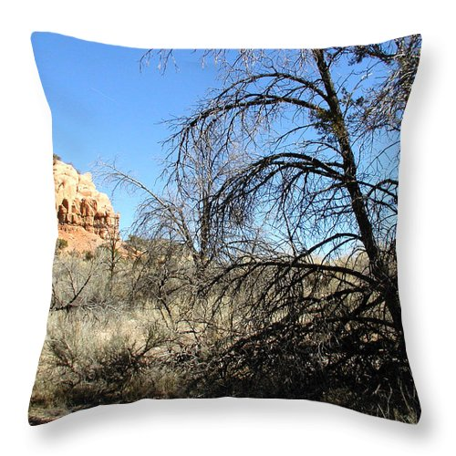 Landscape Throw Pillow featuring the photograph New Mexico Series - Bandelier II by Kathleen Grace