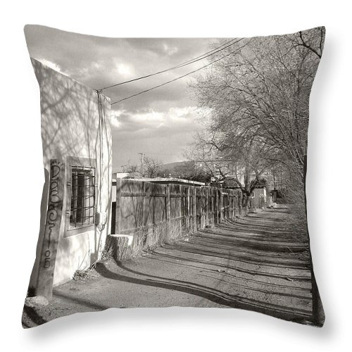 Landscape Throw Pillow featuring the photograph New Mexico Series - Late Day by Kathleen Grace