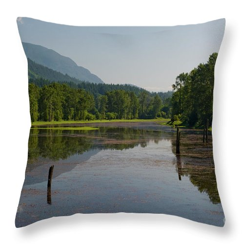 Beautiful Bc Throw Pillow featuring the photograph Nicomen Slough 2 by Rod Wiens