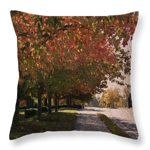 Kelly Rader Throw Pillow featuring the photograph Norman Street by Kelly Rader
