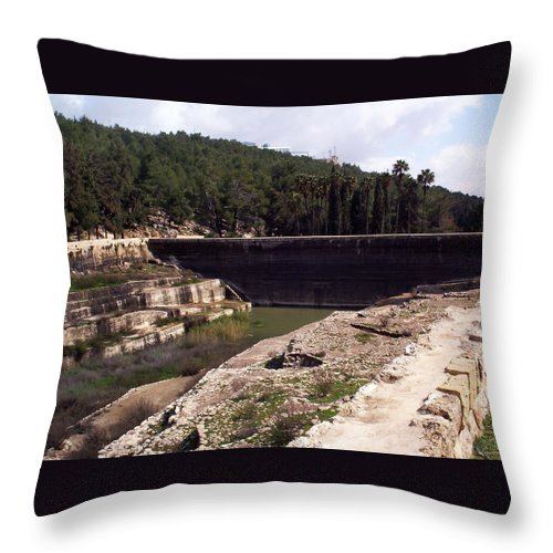 Solomon's Throw Pillow featuring the photograph North Pool by Munir Alawi