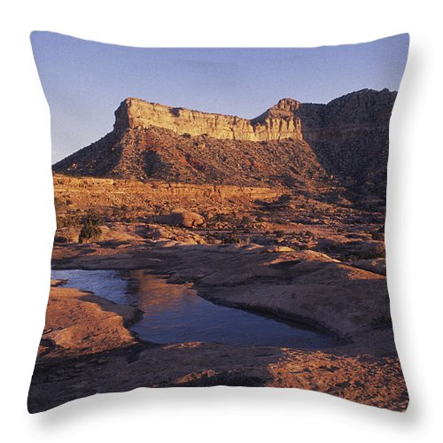Horizontal Throw Pillow featuring the photograph North Rim Toroweap,grand Canyon,arizona by David Edwards