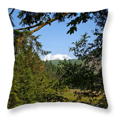 Northwest Throw Pillow featuring the photograph Northwest Trek by Tikvah's Hope