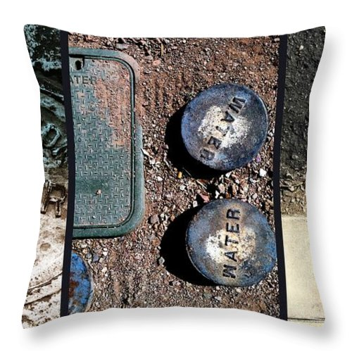 Tucson Throw Pillow featuring the photograph Not A Mirage by Marlene Burns
