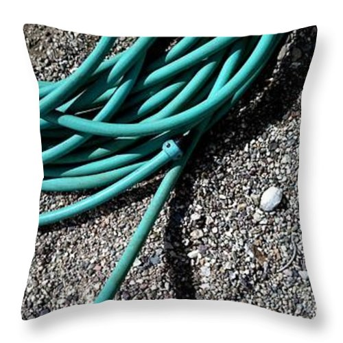 Tucson Throw Pillow featuring the photograph Not A Mirage Too by Marlene Burns
