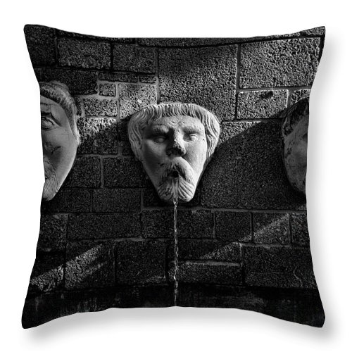 Fountain Throw Pillow featuring the photograph Not A Word by Christopher Holmes