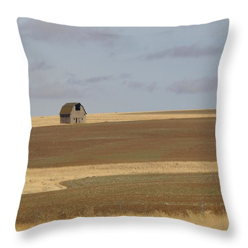 Barn Throw Pillow featuring the photograph Not Much In Adams County Washington by Christine Burdine