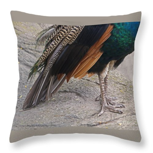 Peahen Throw Pillow featuring the photograph Her Kind Of Beauty by Ann Horn