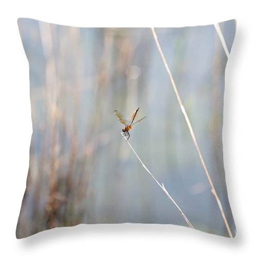 Dragonfly Throw Pillow featuring the photograph Nothing To Do But Wait by Carol Groenen