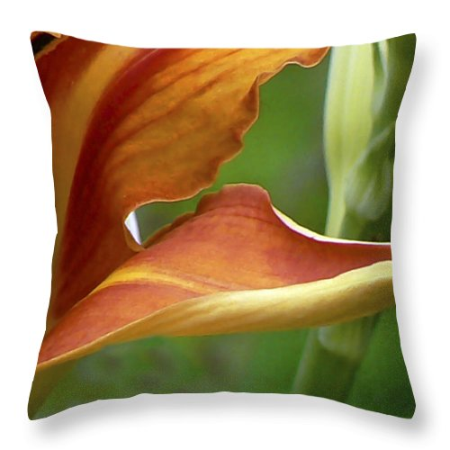Daylily Throw Pillow featuring the photograph Now And Then by Pamela Patch