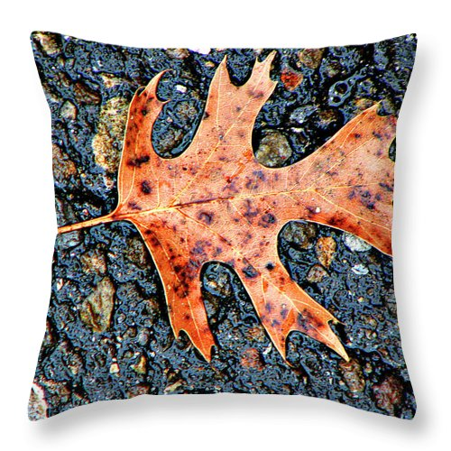 Oak Throw Pillow featuring the photograph Oak Leaf In Fall by Carolyn Marshall