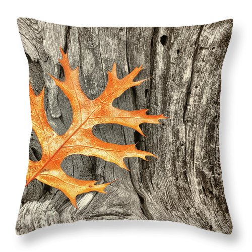 Oak Leaf On Weathered Wood Throw Pillow featuring the photograph Oak Leaf On Weathered Wood by Peg Runyan